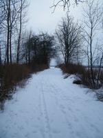 Kelias_Agnusyte_foto