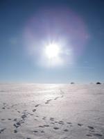 dar žiema Agnusyte2011