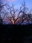 saulėlydis_Agnusyte_foto