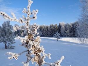 žiema_rudenine_foto2019