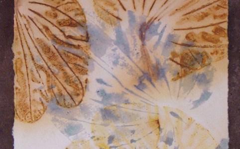 Bauhinia leaf print