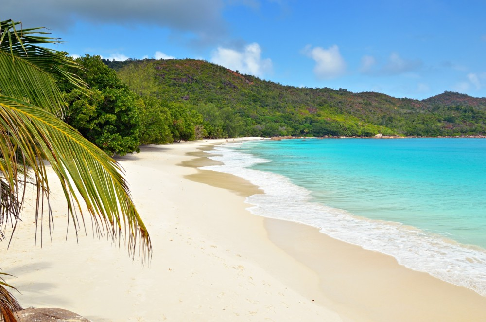 A beach in Seychelles