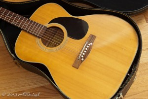 Lyle C-600 Acoustic Guitar
