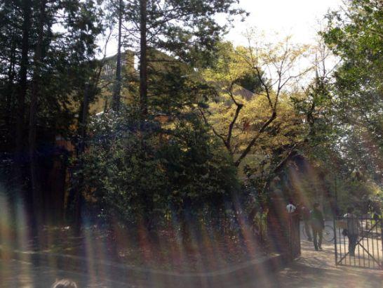林の中のジブリ美術館