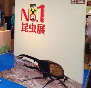 世界No.1昆虫展