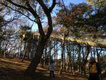「あつぎこどもの森公園」の「森のすべり台」で注意すること