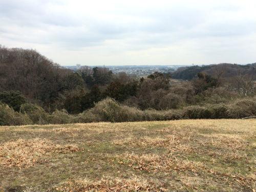 くぬぎの丘からの景色