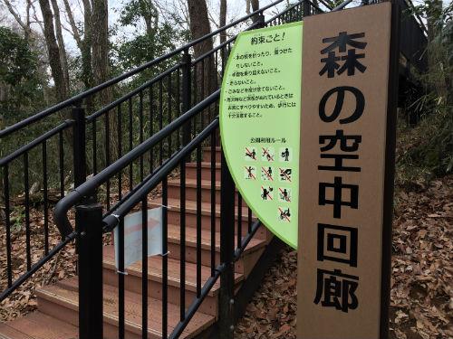 森の空中回廊 冒険の森近くの入口