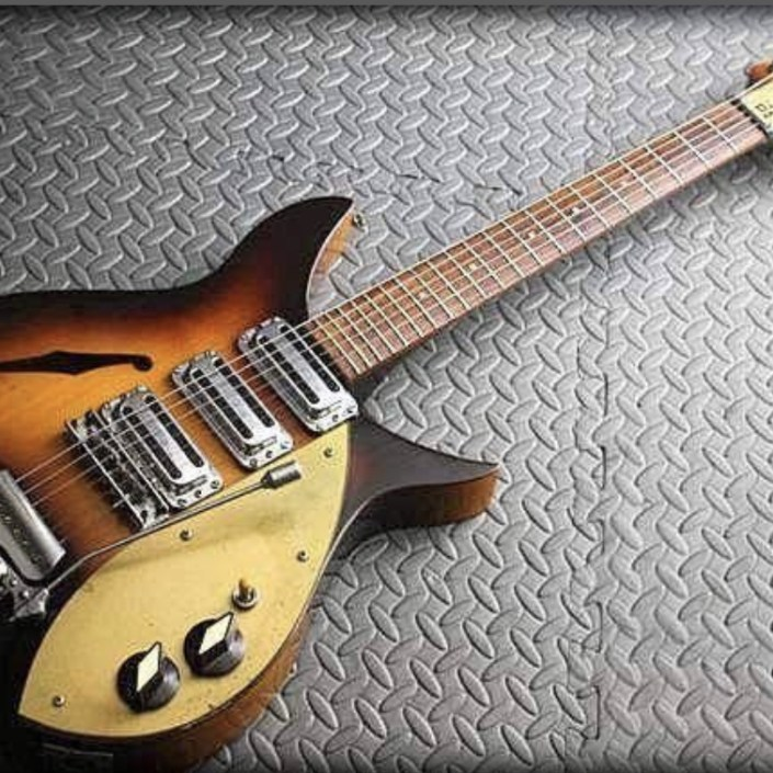 Rickenbacker 325 Custom Build