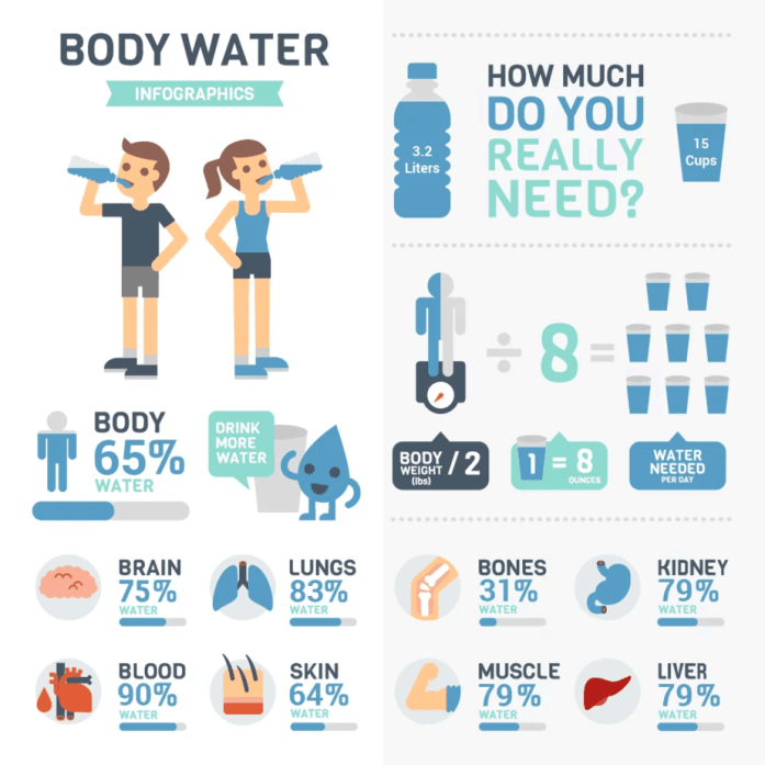 Body Water