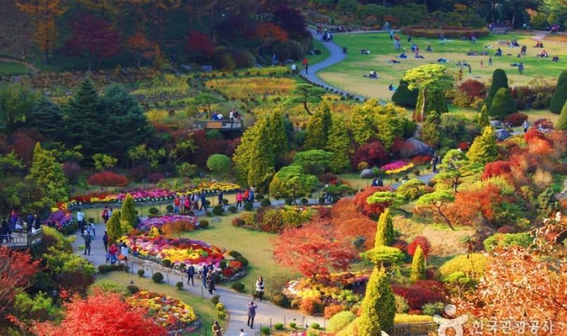 Garden of Morning Calm (아침 고요 수목원)