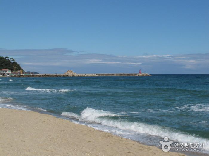 Naksan Beach (낙산해수욕장) | Official Korea Tourism Organization