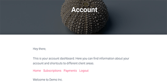 Vista previa de la página de la cuenta