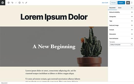 Editor de pantalla completa en WordPress