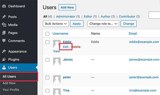 Editar los detalles de un usuario en WordPress