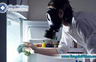 Suýt mất mạng vì 'sát thủ vô hình' trong tủ lạnh