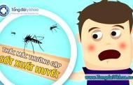 Bệnh sốt xuất huyết - Những kiến thức bạn không thể bỏ qua