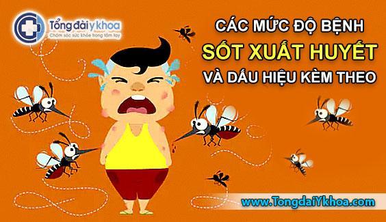 cac muc do sot xuat huyet dengue va dau hieu sot xuat huyet kem theo