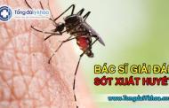 Bác sĩ giải đáp về bệnh sốt xuất huyết Dengue