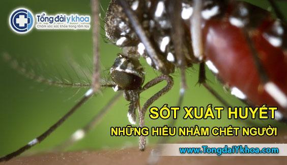 sốt xuất huyết dengue fever