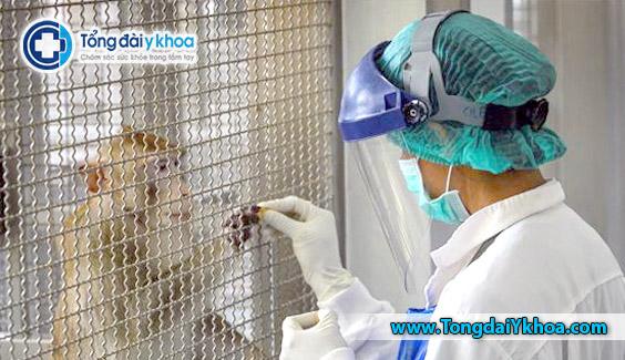 thai lan thu nghiem thanh cong vaccine covid-19 tren khi va chuot TDYK