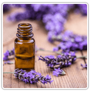 Denver Massage Aromatherapy Essential Oils Massage aromatherapy massage in denver