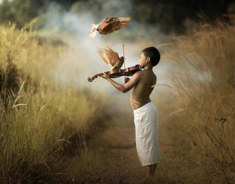 littleboy_violin_andbirds
