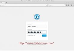 5 WordPress Login