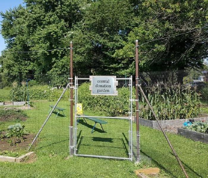 Community Garden Outreach