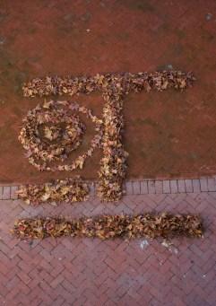 31-5-2012-establishing-themeneutral-smiley-feb