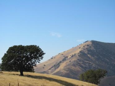 Grass Moutnatin from Figueroa Mountain road