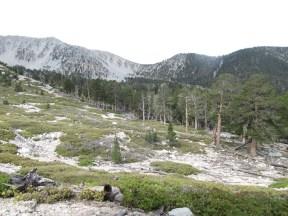 Trail Flats 9680'
