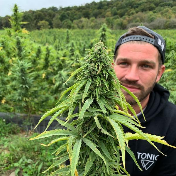 erik-carbone lead grower tricolla-farms