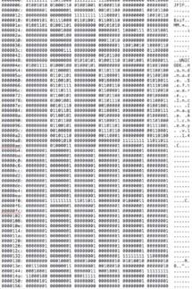 Portion of Mona Lisa's Binary Code