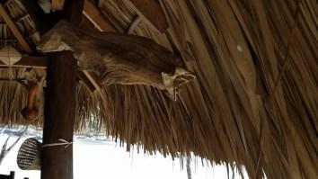 Decoration using a fish and wood at Playa Ventanilla