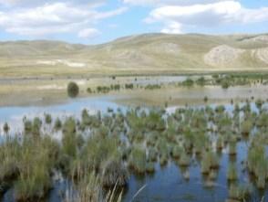 Die Ruta 30 C nach Arequipa