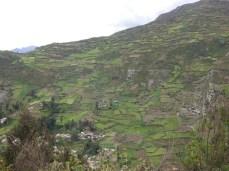 Bewirtschafteter Hang bei Huari - schachbrettähnlich