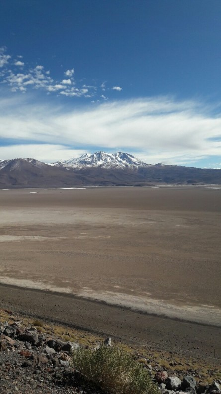 Eindrucksvolle Fahrt mitten durch die Atacama - das Braune ist ein riesiger Salzsee