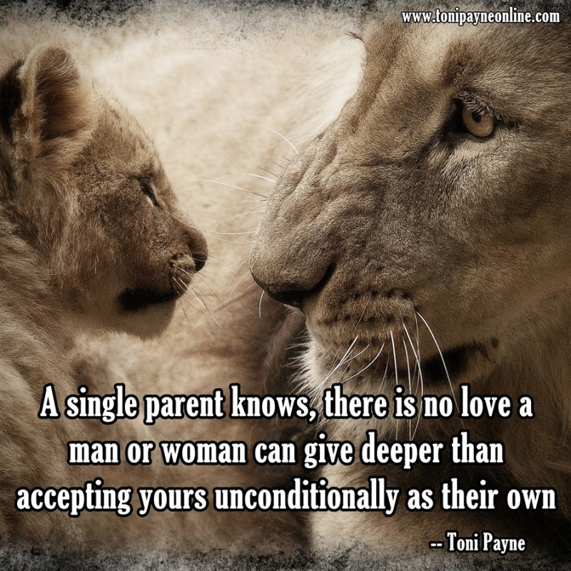 Step Parent Love Quotes Awesome Picture Quote About Finding Love As A Single Parent & Step