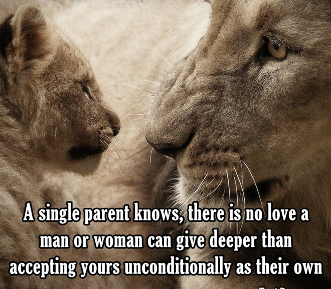 Picture Quote About Finding Love as a Single Parent & Step Parenting