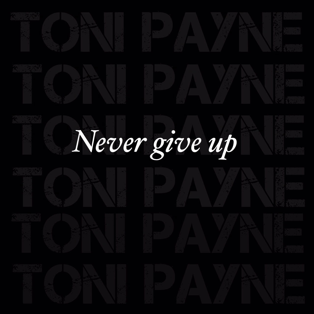 Never Give Up On Life Quotes Quote About Perseverance.never Give Up  Toni Payne  Official