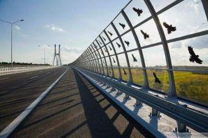 Hàng rào - vách ngăn cách âm tiếng ồn từ đường giao thông vào khu dân cư bằng tấm polycarbonate rỗng ruột màu Clear (Trong Kính) kết hợp với dán decal hình chim bay