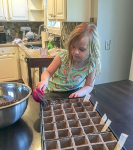 gardening and planting seeds
