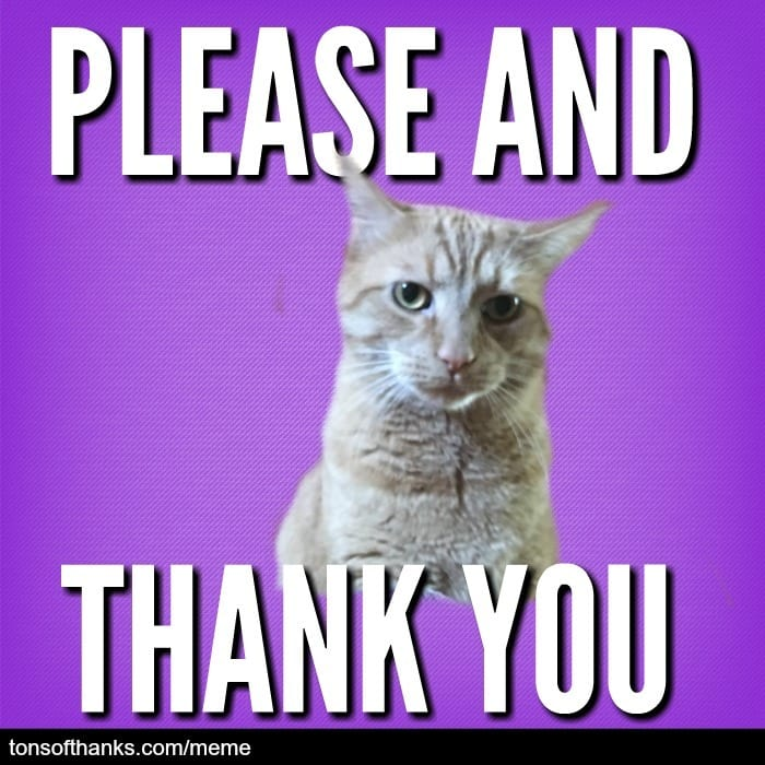 please and thank you cat meme