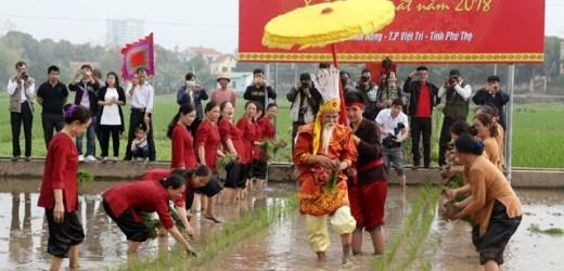 Tái hiện cảnh Vua Hùng dạy dân cấy lúa