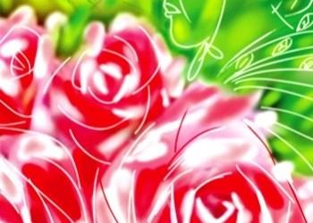 Hoa cho người ở lại