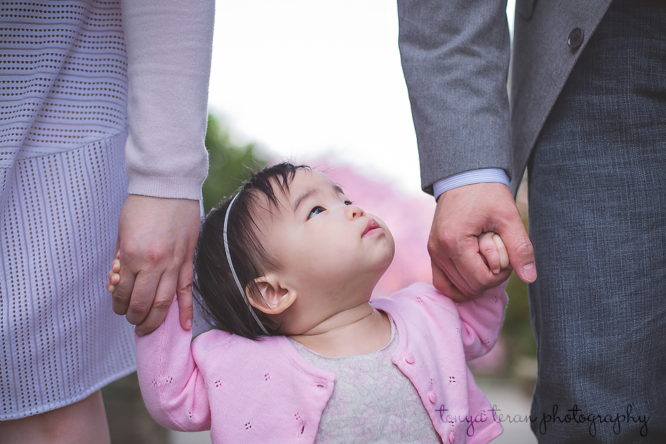 Family cherry blossom session - Tonya Teran Photography - Rockville, MD Newborn Baby and Family Photographer