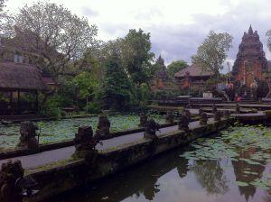 Mi viaje a Indonesia – Dia 11 – Ubud – Explorando Ubud