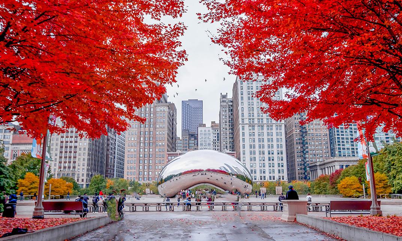 เรียนต่ออเมริกา เรียนต่อชิคาโก้ Study in Chicago