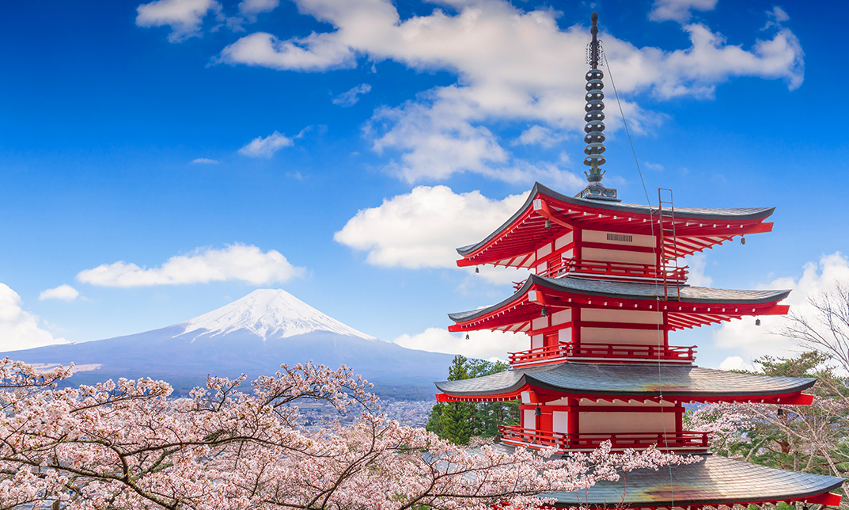 Study in Tokyo เรียนต่อโตเกียว เรียนต่อประเทศญี่ปุ่น โตเกียว